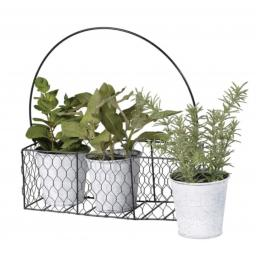 Set of 3 Assorted Herbs in Tins in Metal Carrier