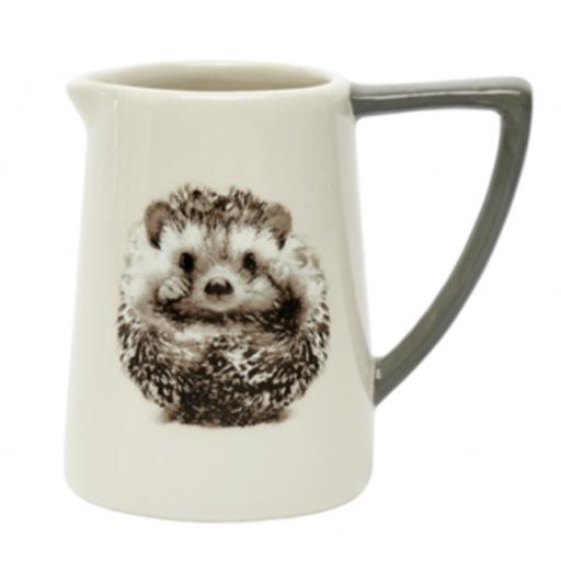 Hedgehog Design Jug