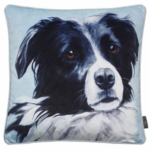 Shep Border Collie Cushion