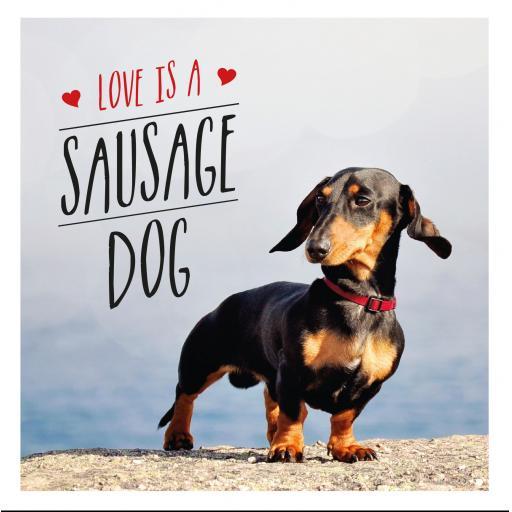 HARDBACK BOOK LOVE IS A SAUSAGE DOG