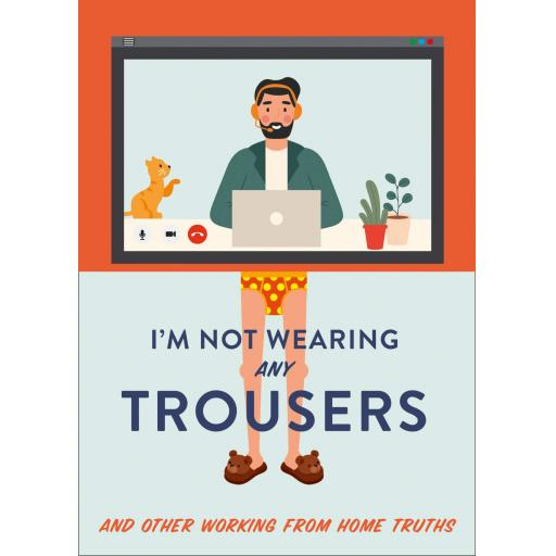 PAPERBACK BOOK IM NOT WEARING ANY TROUSERS (WORKING FROM HOME TRUTHS)
