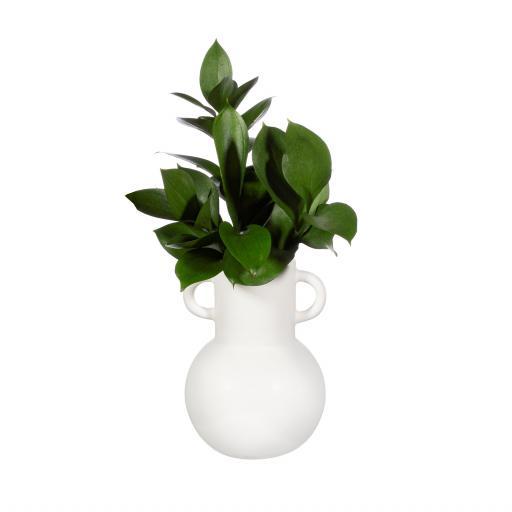 Small White Amphora Vase