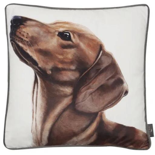 Stefani Dachshund Dog Cushion
